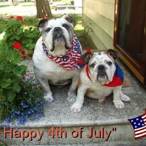 Happy 4th of July !!!!!