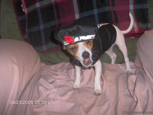 pebbles_not_liking_her_new_hat